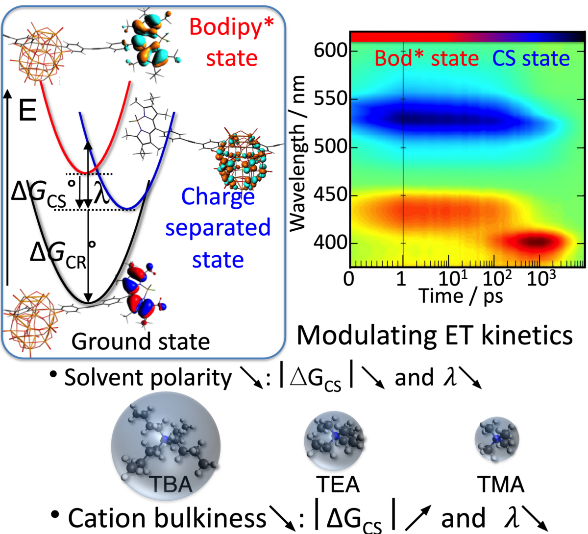 Tuning Photoinduced Electron Transfer in POM‐Bodipy Hybrids by Controlling the Environment: Experiment and Theory